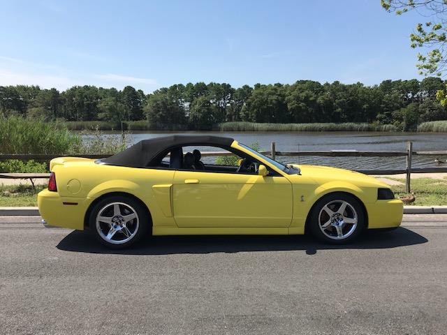 2003 Ford Mustang Cobra (CC-1254191) for sale in Orange, California