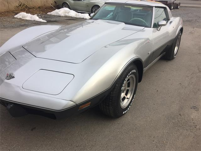 1978 Chevrolet Corvette (CC-1254496) for sale in Mount Union, Pennsylvania
