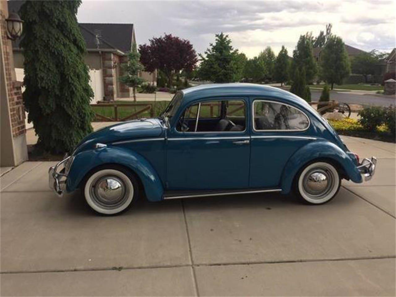 1965 Volkswagen Beetle (CC-1255058) for sale in Long Island, New York