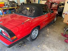 1987 Alfa Romeo Spider (CC-1255367) for sale in Long Island, New York