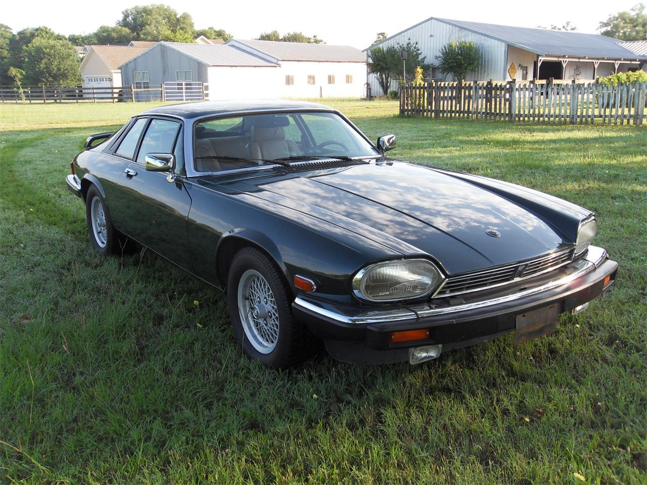 1990 Jaguar XJS (CC-1256138) for sale in Houston, Texas
