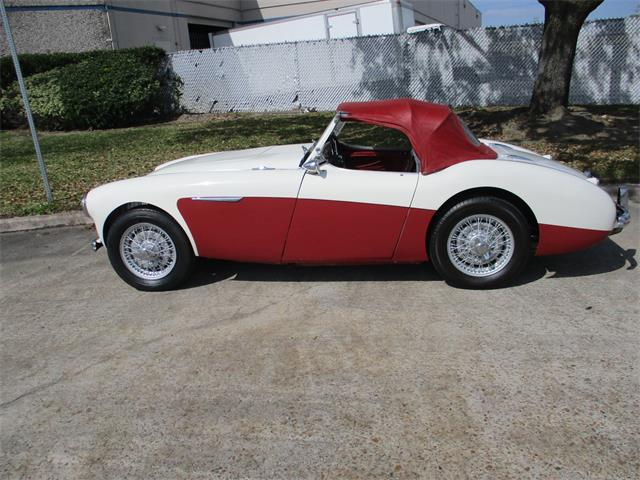 1955 Austin-Healey 100-4 BN2 (CC-1256154) for sale in Houston, Texas