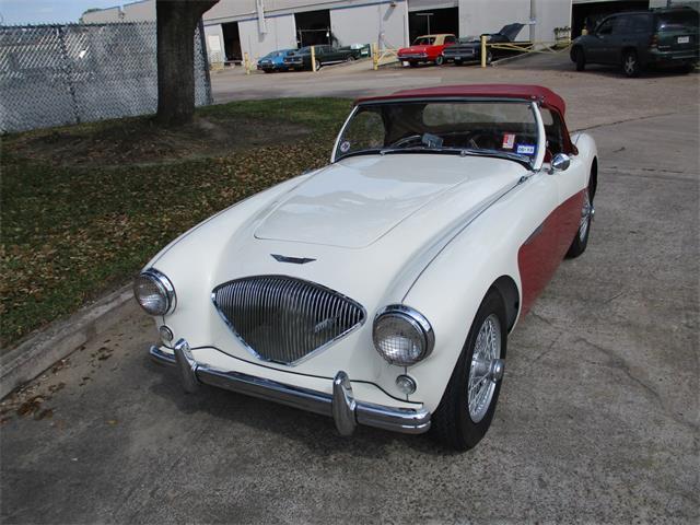 1955 Austin-Healey 100-4 BN2 (CC-1256154) for sale in Houston, Texas