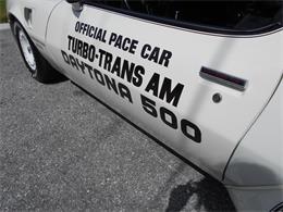 1981 Pontiac Firebird Trans Am (CC-1250654) for sale in APOPKA, Florida