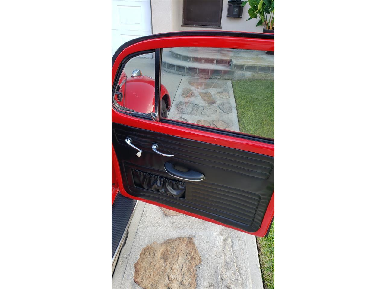 1965 Volkswagen Beetle (CC-1257082) for sale in Lakewood, California