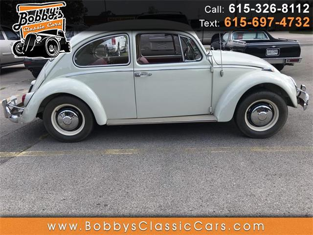1966 Volkswagen Beetle (CC-1258340) for sale in Dickson, Tennessee