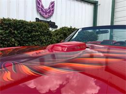 1980 Pontiac Firebird Trans Am (CC-1258389) for sale in Miami, Florida