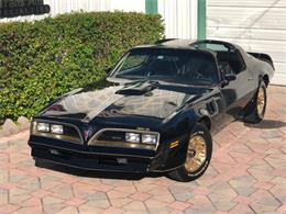 1977 Pontiac Firebird Trans Am SE (CC-1258391) for sale in Miami, Florida