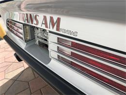 1975 Pontiac Firebird Trans Am (CC-1258392) for sale in Miami, Florida