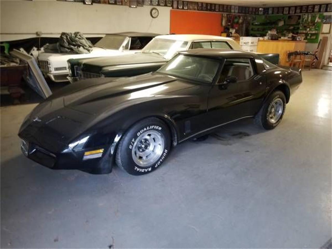 1980 Chevrolet Corvette (CC-1259318) for sale in Cadillac, Michigan