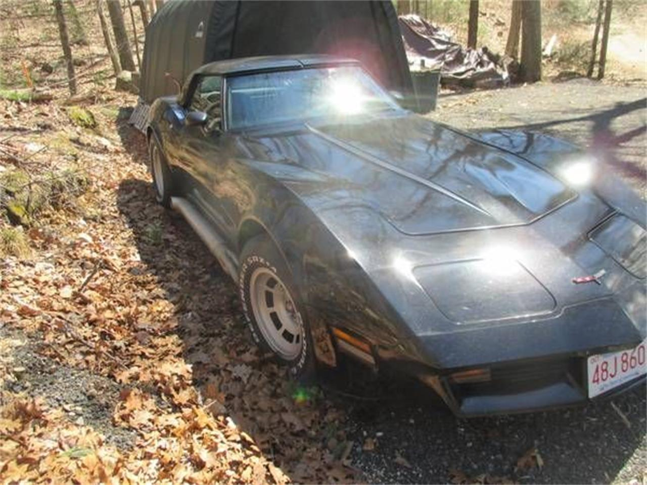 1980 Chevrolet Corvette (CC-1259372) for sale in Cadillac, Michigan