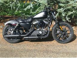 2018 Harley-Davidson Sportster (CC-1259496) for sale in Cadillac, Michigan