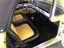 1955 Ford Thunderbird (CC-1259563) for sale in Concord, North Carolina