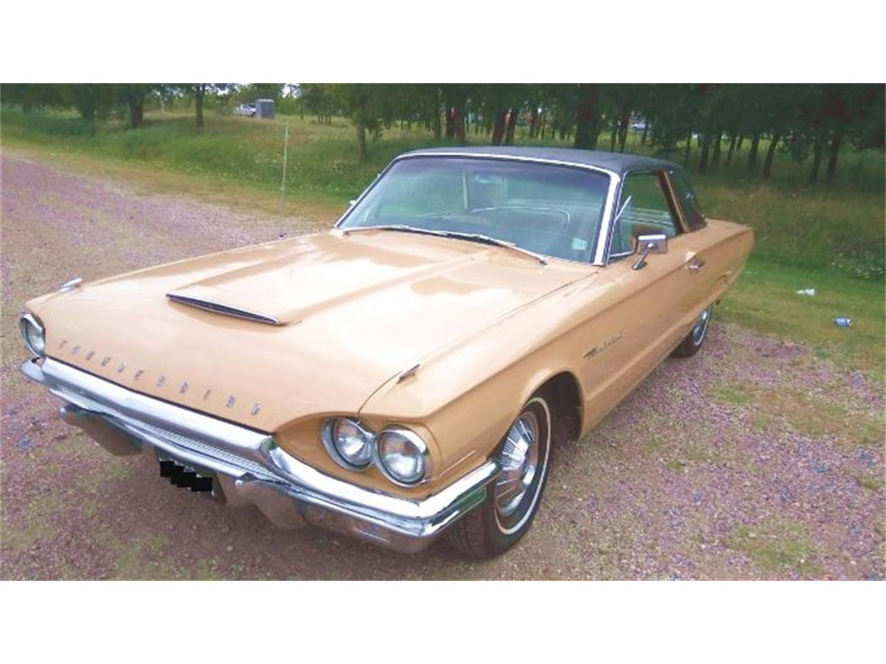1964 Ford Thunderbird (CC-1259680) for sale in Cadillac, Michigan