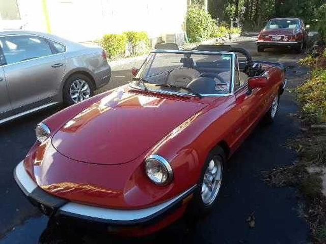 1987 Alfa Romeo Spider (CC-1261006) for sale in Long Island, New York