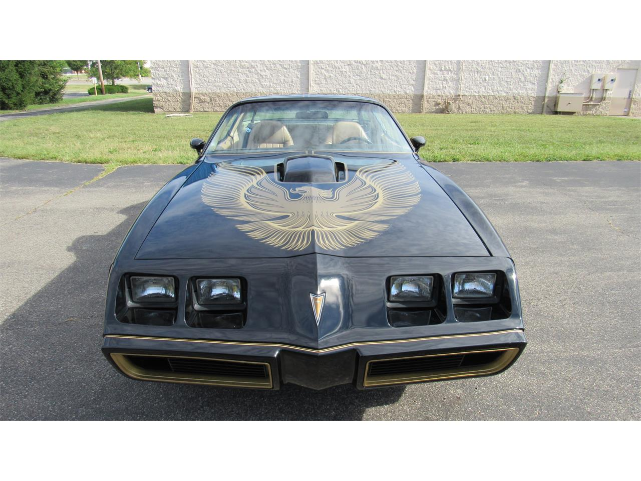 1981 Pontiac Firebird Trans Am (CC-1261095) for sale in Milford, Ohio
