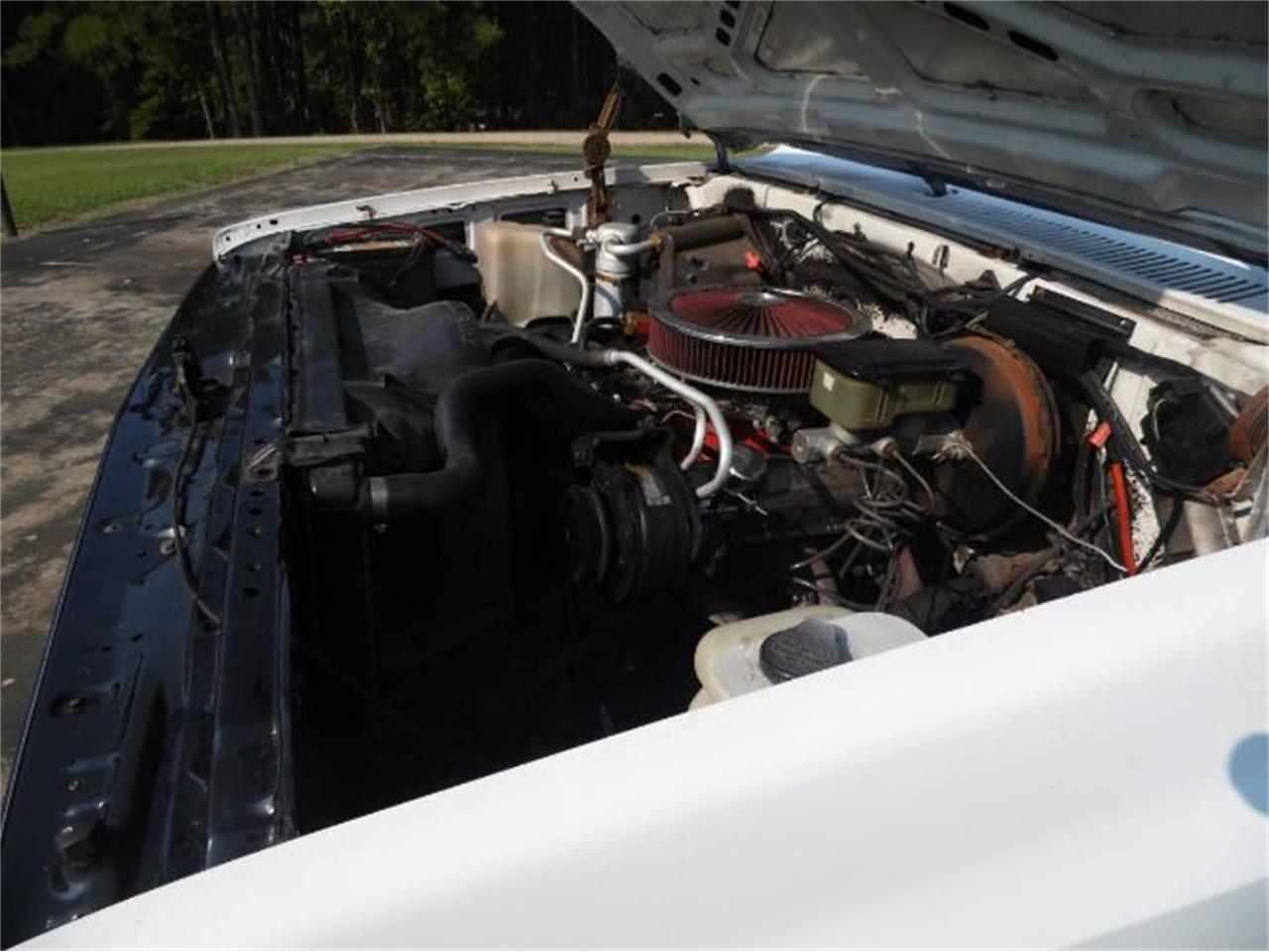 1986 Chevrolet C10 (CC-1261425) for sale in Cadillac, Michigan