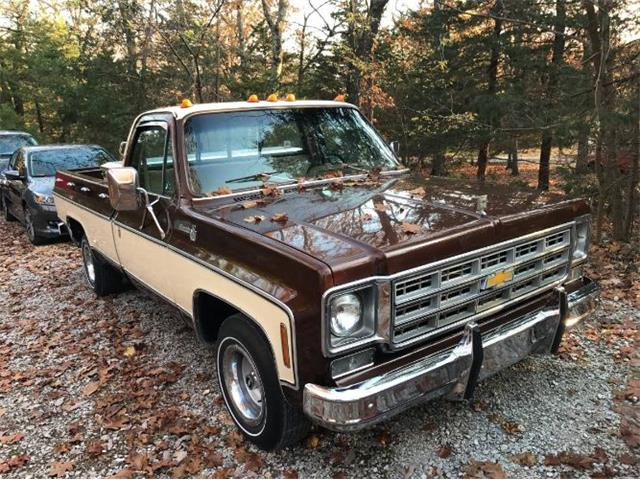 1978 Chevrolet Silverado (CC-1260143) for sale in Cadillac, Michigan
