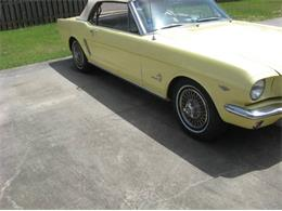 1964 Ford Mustang (CC-1261431) for sale in Cadillac, Michigan