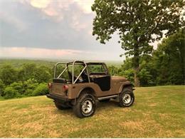 1979 Jeep CJ5 (CC-1260298) for sale in Cadillac, Michigan