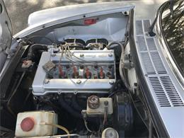 1981 Alfa Romeo Spider (CC-1263269) for sale in Biloxi, Mississippi