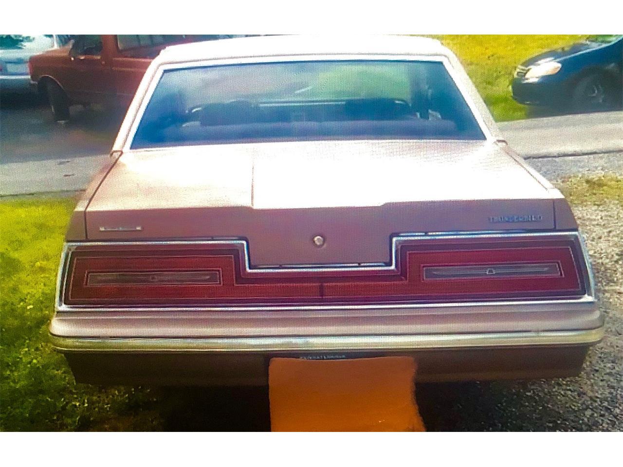1981 Ford Thunderbird (CC-1263507) for sale in Dover, Pennsylvania