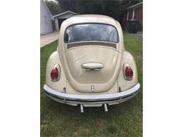 1969 Volkswagen Beetle (CC-1260401) for sale in Cadillac, Michigan