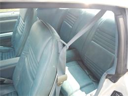 1979 Pontiac Firebird Trans Am (CC-1264064) for sale in Celina, Ohio