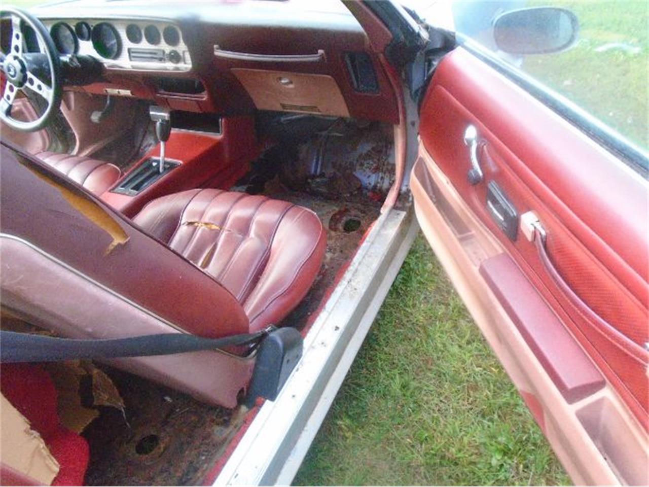 1976 Pontiac Firebird Trans Am (CC-1264080) for sale in Cadillac, Michigan
