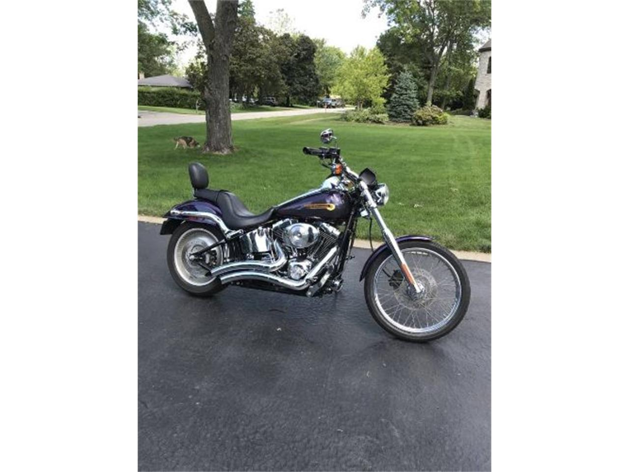 2004 Harley-Davidson Motorcycle (CC-1260453) for sale in Cadillac, Michigan
