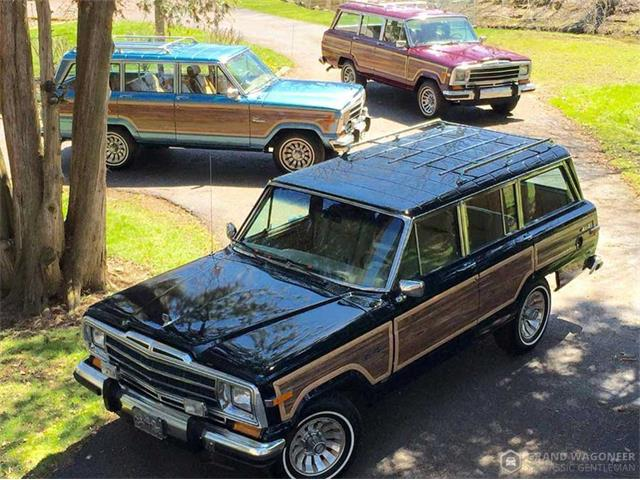 1987 Jeep Grand Wagoneer (CC-1265087) for sale in Bemus Point, New York