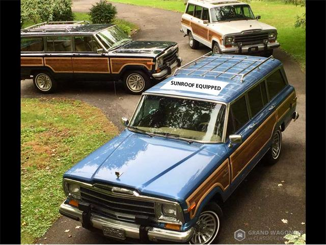 1991 Jeep Grand Wagoneer (CC-1265098) for sale in Bemus Point, New York