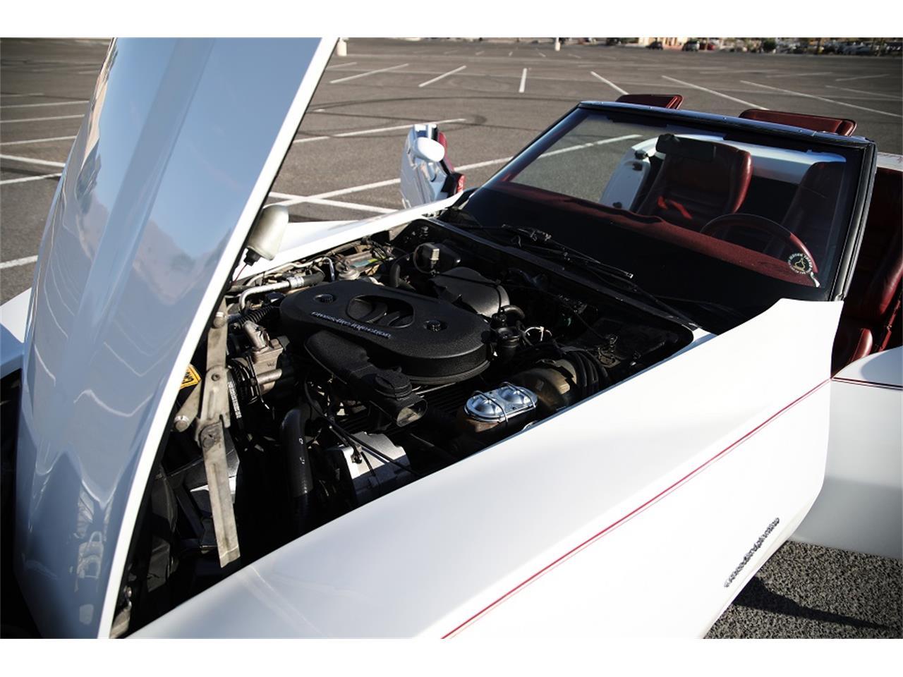 1982 Chevrolet Corvette (CC-1265520) for sale in Lake Havasu City, Arizona