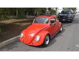 1963 Volkswagen Beetle (CC-1265778) for sale in Cadillac, Michigan