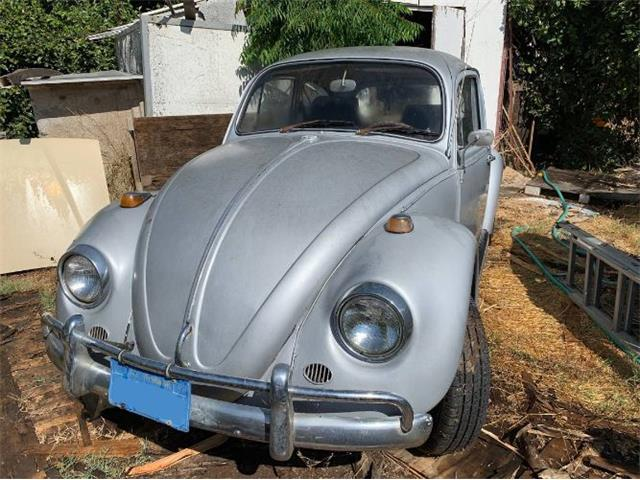 1967 Volkswagen Beetle (CC-1265796) for sale in Cadillac, Michigan