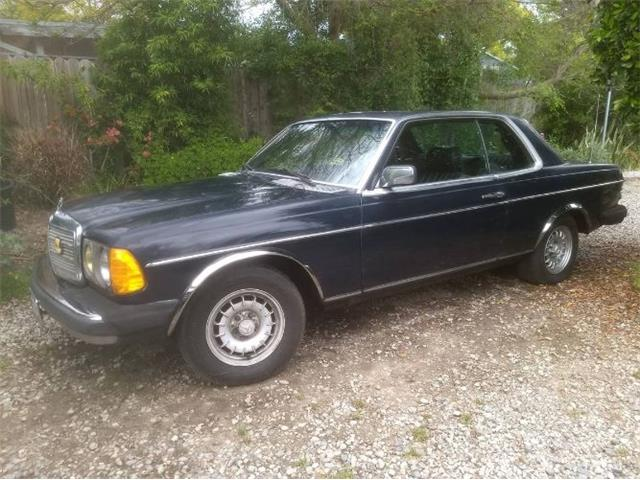 1981 Mercedes-Benz 300C (CC-1265820) for sale in Cadillac, Michigan