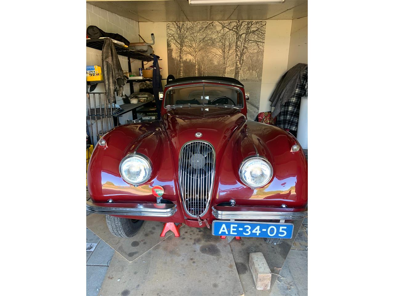 1953 Jaguar XK120 (CC-1266175) for sale in Roermond, limburg