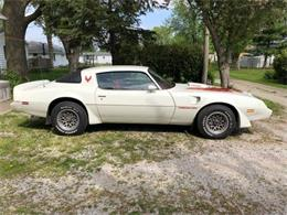 1979 Pontiac Firebird Trans Am (CC-1260629) for sale in Cadillac, Michigan