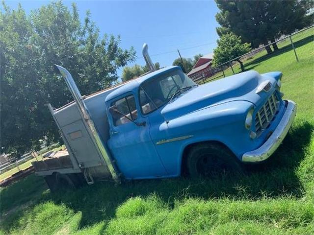 1955 Chevrolet 3100 (CC-1260664) for sale in Cadillac, Michigan