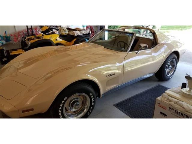 1976 Chevrolet Corvette (CC-1267223) for sale in Cadillac, Michigan