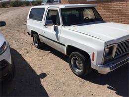 1979 Chevrolet Blazer (CC-1260749) for sale in Cadillac, Michigan
