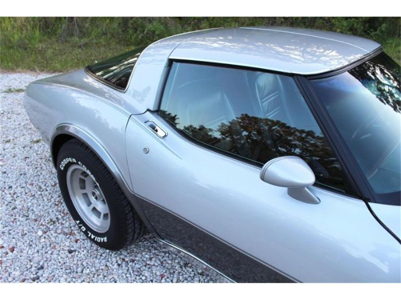 1978 Chevrolet Corvette (CC-1260817) for sale in Cadillac, Michigan