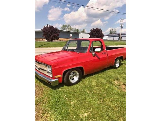 1981 Chevrolet C10 (CC-1268777) for sale in Cadillac, Michigan