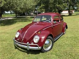 1964 Volkswagen Beetle (CC-1268814) for sale in Cadillac, Michigan