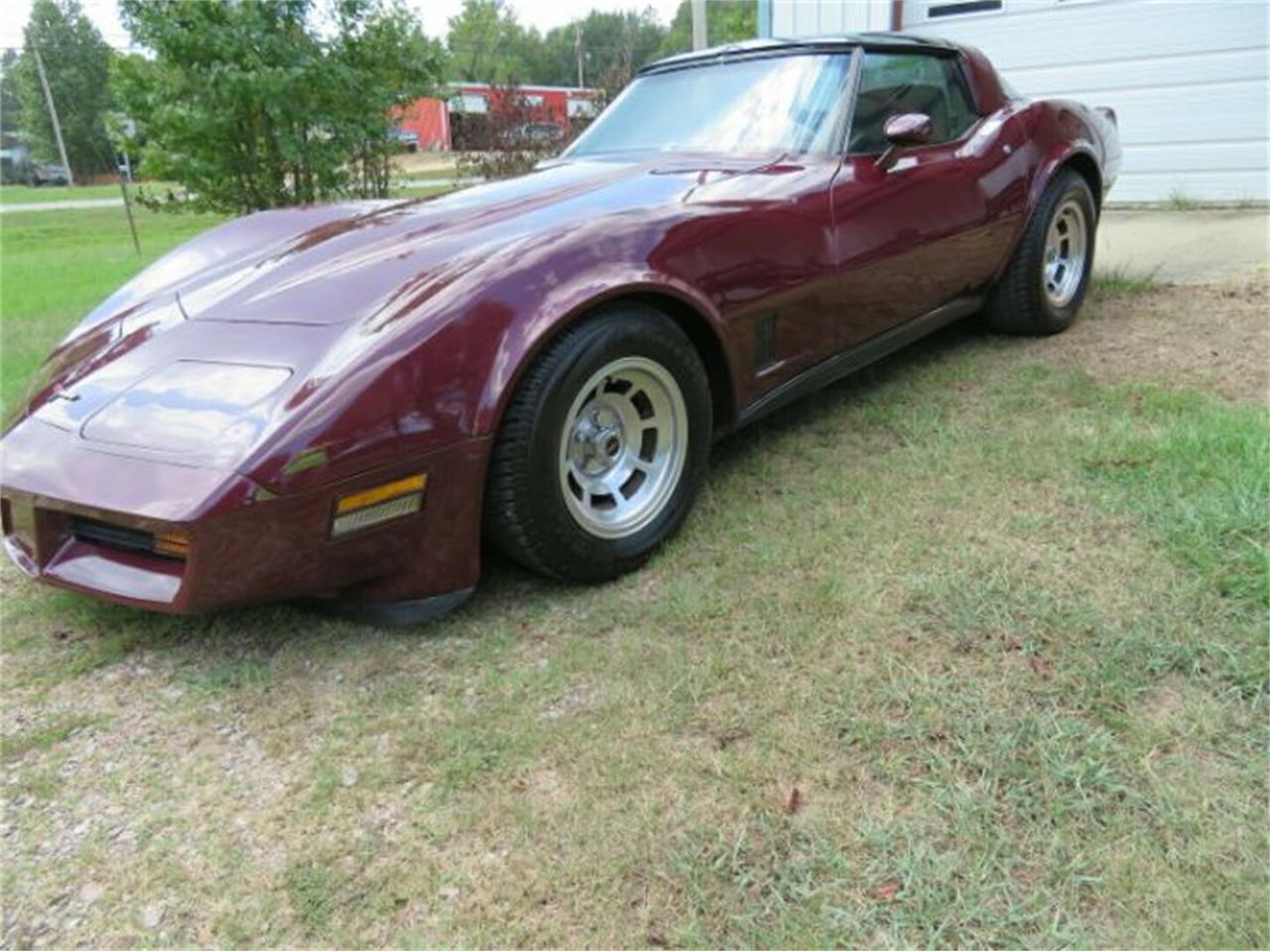 1981 Chevrolet Corvette (CC-1260897) for sale in Cadillac, Michigan