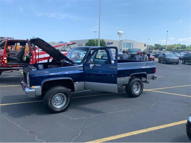 1983 Chevrolet K-10 (CC-1260901) for sale in Cadillac, Michigan