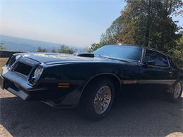 1976 Pontiac Firebird Trans Am (CC-1269824) for sale in Chattanooga, Tennessee