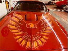 1979 Pontiac Firebird Trans Am (CC-1271462) for sale in Mundelein, Illinois