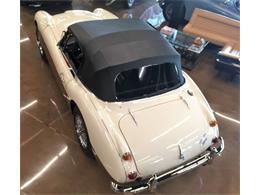 1966 Austin-Healey BJ8 (CC-1272440) for sale in St Louis, Missouri
