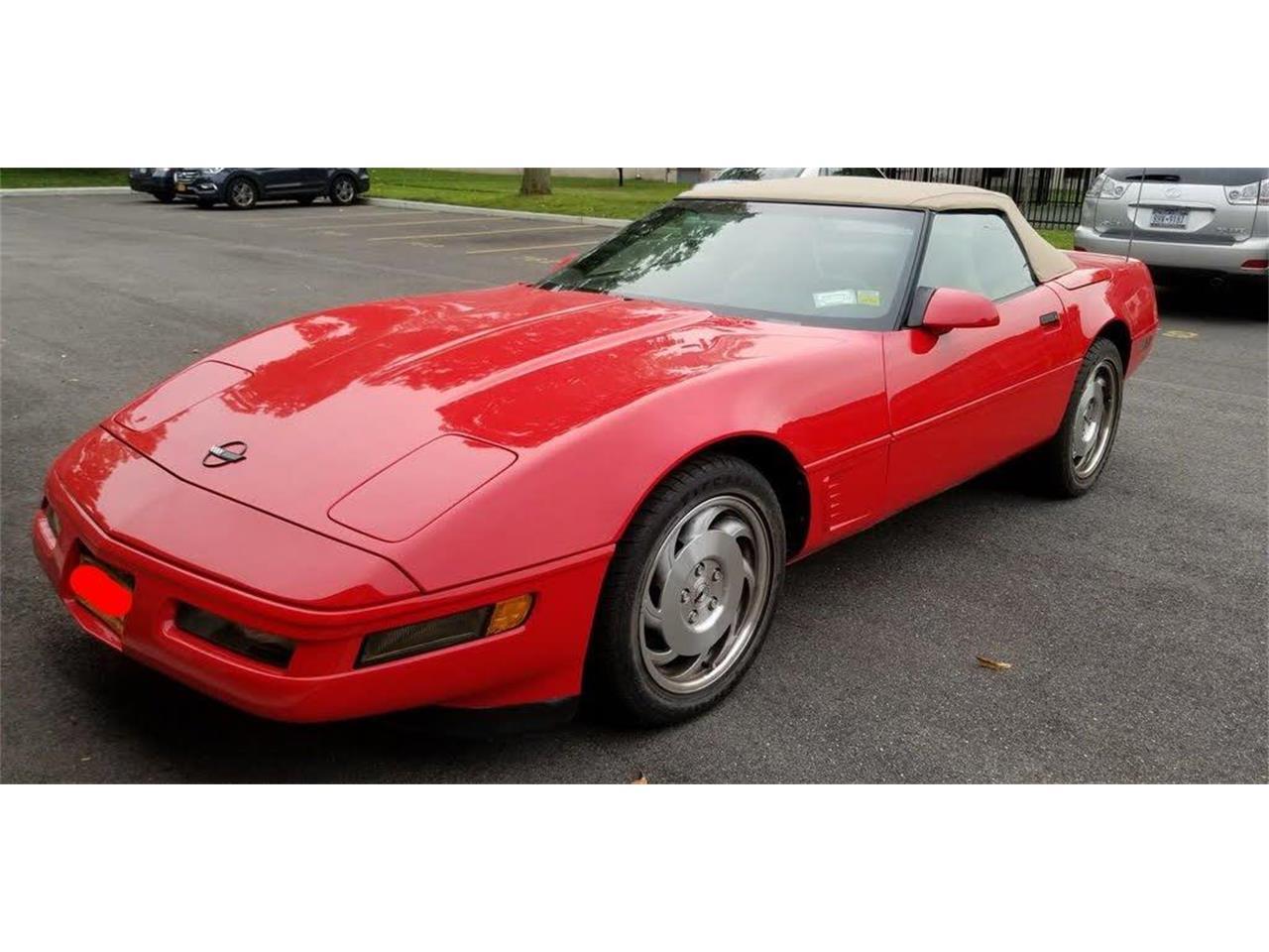 1996 Chevrolet Corvette (CC-1273032) for sale in Great Neck, New York